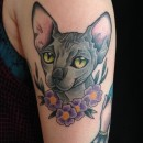 colour tattoo of hairless sphinx cat on ladys arm with four purple flowers underneath